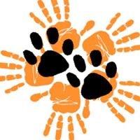 Animal Rescue Asia