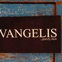 Vangelis.purely hair