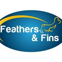 Feathers and Fins