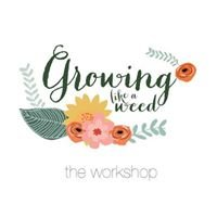Elizabeth Baxter Photography - Workshops & Mentoring