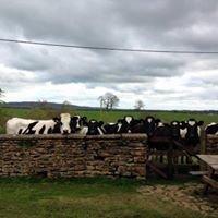 Gilcombe Farm