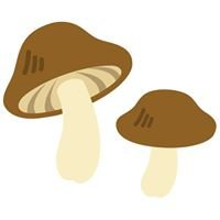 Exotic Mushroom Co.