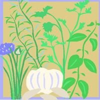 Mountainside Herbal Nursery
