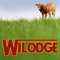 Wilodge