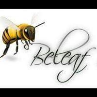 Beleaf in Nature