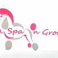 L A Spa N Groom Dog groomers