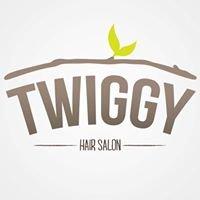 Twiggy Salon