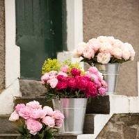 Moorfield Flowers