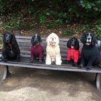 The Woof Woof Gang