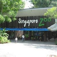 Singapo Zoo