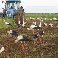 Eco-Agri Consultants CC