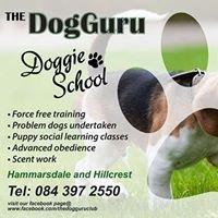 The Dog Guru Behaviorist and Trainer