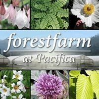 Forestfarm at Pacifica