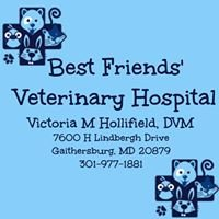 Best Friends' Veterinary Hospital