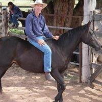 Horseandridertherapy