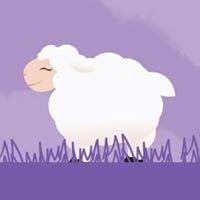 Little Lamb's Closet-thewoodlandsumc.org