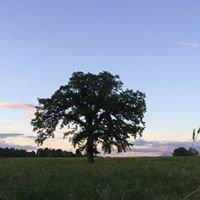 Philo Ridge Farm