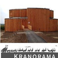 Kranorama