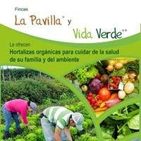 Vida Verde, finca orgánica