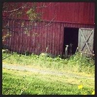 Fresh View Farm