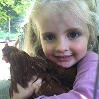 Radical Childhood Farm & Forest Camp