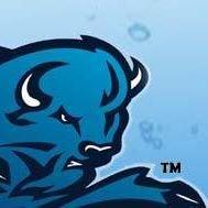 Blue Bison Water