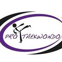 Pro Taekwondo