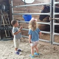 Divine Equine Rescue and Therapy Inc.