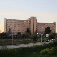 Hospital La Ligua