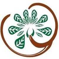 Thymiama Bioprofumeria Sorbolo - PR