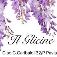 Il Glicine