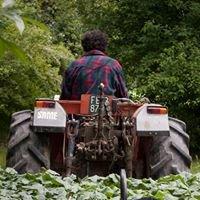 Passo Regina azienda agricola biologica