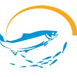 Montague Marine Research LLC