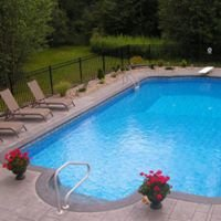 Dolphin Pools & Spas, LLC