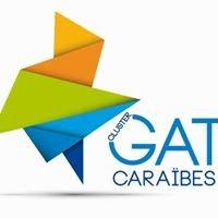 Cluster GAT Caraibes