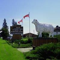 Egli's Sheep Farm Ltd