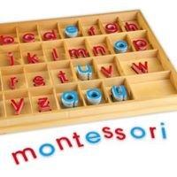 Robert Goddard Montessori School PTSA