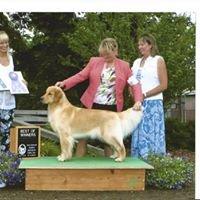 Creative Canines Mobile Pet Salon LLC