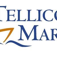 Tellico Marina