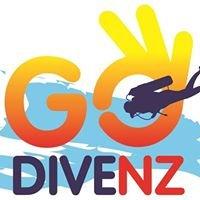 Go Dive Marlborough