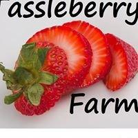 The Taste Of Tassleberry