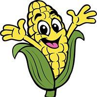 Sauchuk's Corn Maze & Pumpkin Patch
