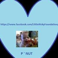 The Little Ricky Foundation