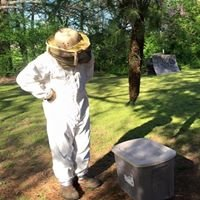 Brush Creek Honey Farm