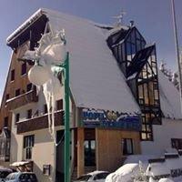 Hotel des Neiges Les 2 Alpes