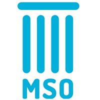 MSO - Management Student Opportunities