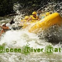 Ocoee River Rats