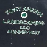Tony Ahern Landscaping LLC