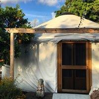 The Momma Yurt