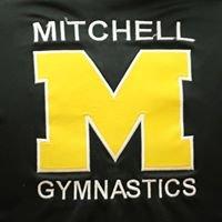 Mitchell Kernel Gymnastics